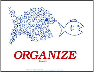 organize-big-fish